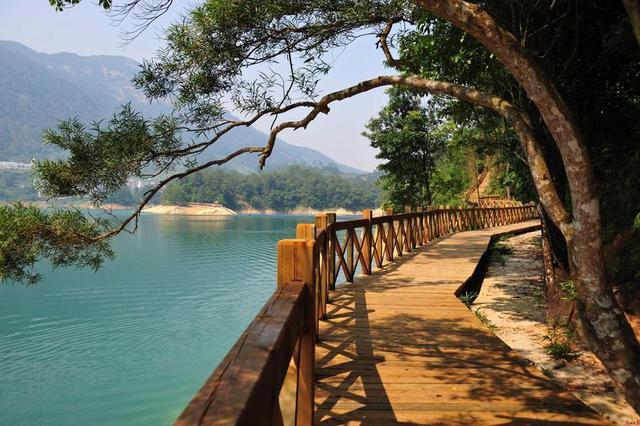 """广州海珠湿地打造大湾区""""中央公园"""",100个森林旅游新兴品牌地的年度访客总数达4310万人次。"""