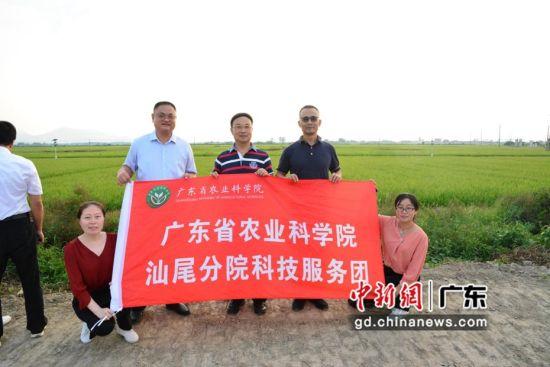 """广东省农科院与省内各地实现""""院地""""合作模式,不断探索和创新,科技强农层出不穷。"""